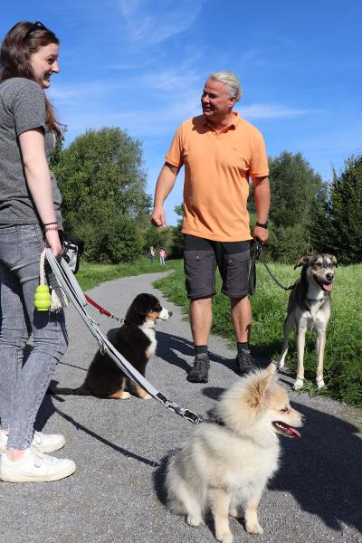 welpen-hundeschule-spaziergang