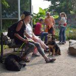 dosoco-walk-zoo_0462