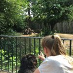 dosoco-walk-zoo_0463