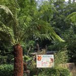 dosoco-walk-zoo_0465