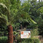 dosoco-walk-zoo_0465