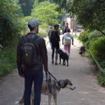 dosoco-walk-zoo_0477