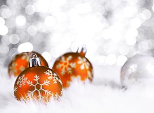 dog-event-treff-orange-weihnachten
