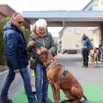 Dog-Team-Tag-190414-08