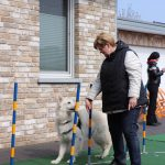 Dog-Team-Tag-190414-10