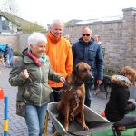 Dog-Team-Tag-190414-19