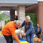 Dog-Team-Tag-190501-34