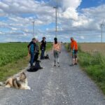 hundeschule-karlstedt-gruppenstunde-profis-juli-2021-02