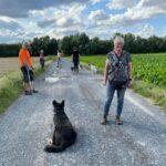 hundeschule-karlstedt-gruppenstunde-profis-juli-2021-04