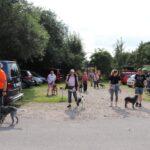 hundeschule-karlstedt-gruppenstunde-starter-juli-2021-02