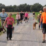 hundeschule-karlstedt-gruppenstunde-starter-juli-2021-07