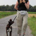 hundeschule-karlstedt-gruppenstunde-starter-juli-2021-09