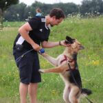 hundeschule-karlstedt-gruppenstunde-starter-juli-2021-11