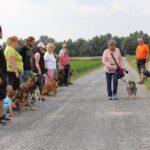 hundeschule-karlstedt-gruppenstunde-starter-juli-2021-17