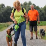 hundeschule-karlstedt-gruppenstunde-starter-juli-2021-18