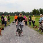 hundeschule-karlstedt-gruppenstunde-starter-juli-2021-20