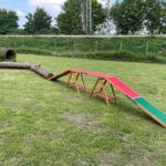hundeschule-karlstedt-naturparcours-06