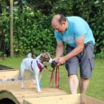 hundeschule-karlstedt-naturparcours-09