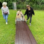 hundeschule-karlstedt-naturparcours-13