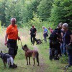 hundeschule-karlstedt-pielsbusch-juli-2021-03