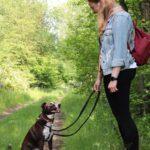 hundeschule-karlstedt-training-gelaende-01