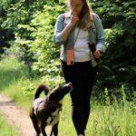 hundeschule-karlstedt-training-gelaende-03