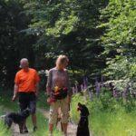 hundeschule-karlstedt-training-gelaende-05