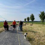 hundeschule-karlstedt-training-gelaende-09